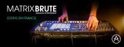 Le MatrixBrute d'Arturia arrive en France !