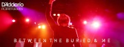BETWEEN THE BURIED AND ME et les câbles D'ADDARIO
