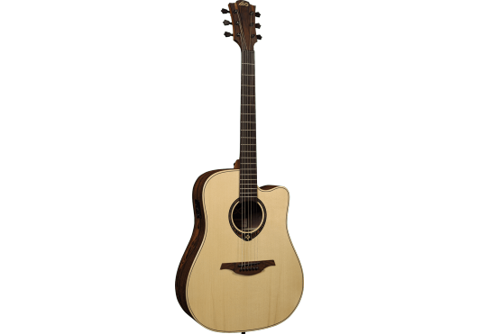 Dreadnought Cutaway electro Snakewood
